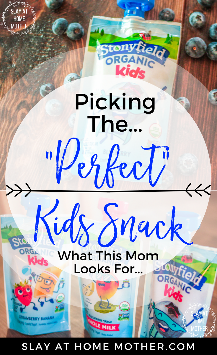 AD Picking The Perfect Kids Snack - 5 Things I Look For! #StonyfieldKids #stonyfield #slayathomemother #kidssnacks - SlayAtHomeMother.com