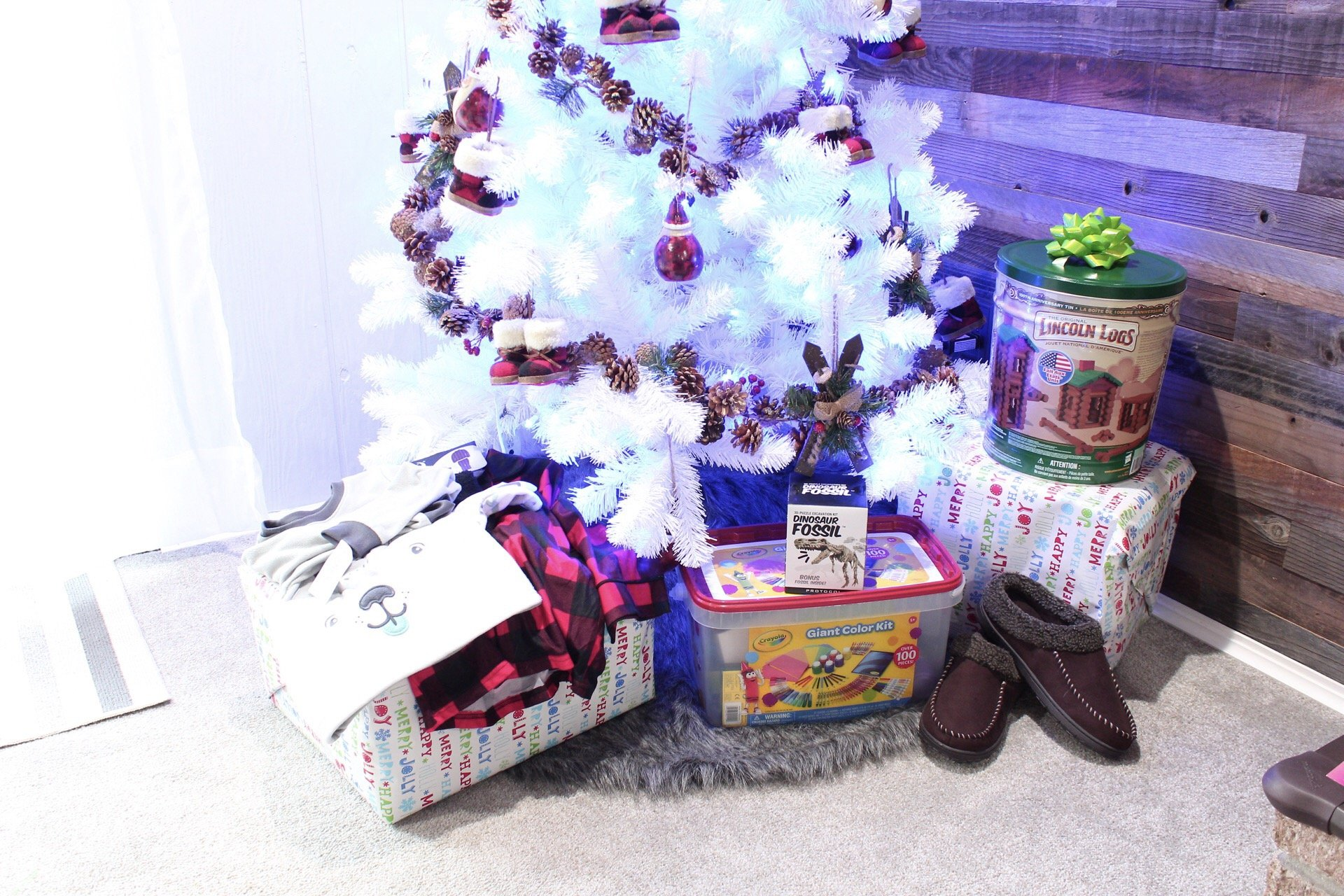 Christmas Gifts For The Family For Under $100!