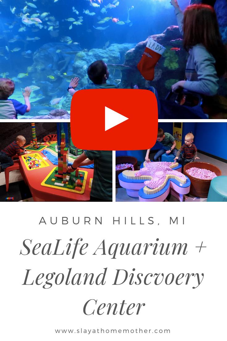 SeaLife Aquarium and Legoland Discovery Center Visit in Auburn Hills, MI #notsponsored #slayathomemother #legolanddiscoverycenter #sealife #aquarium -- SlayAtHomeMother.com