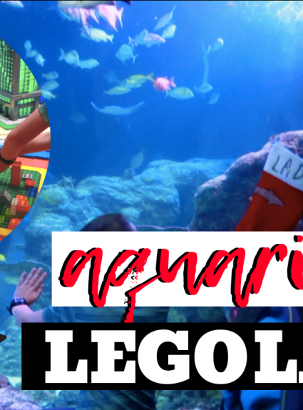 SEALIFE Aquarium and Legoland at Great Lakes Crossing
