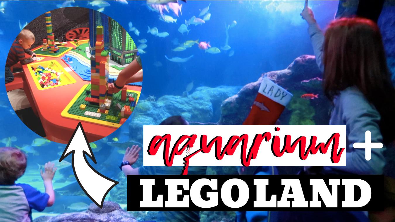SEALIFE Aquarium and Legoland at Great Lakes Crossing