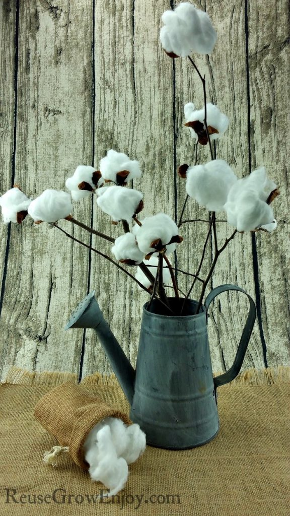 DIY-Cotton-Stem-Farmhouse-Style-Decor-576x1024