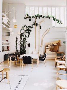 House Plants That Are Hard To Kill - SlayAtHomeMother.com