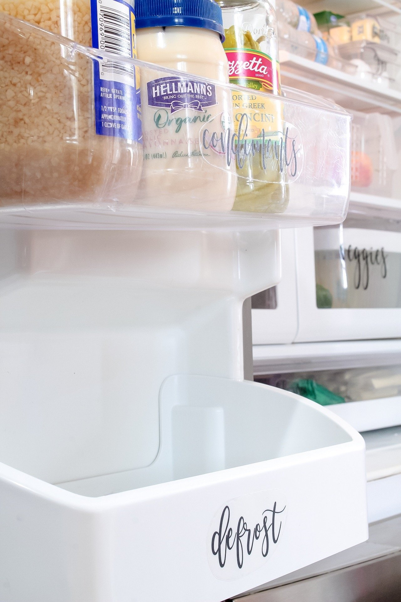 Left fridge door storage with condiments section and defrost section for frozen meats