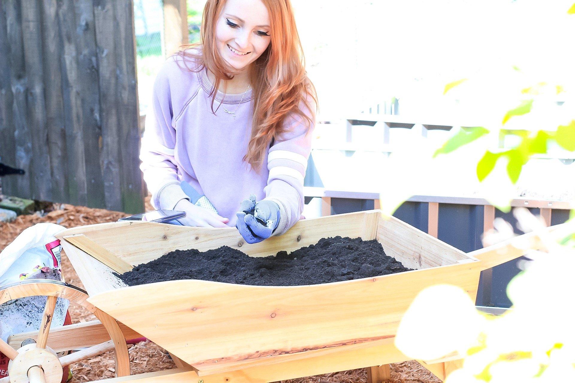 Setting Up Our Garden + 10 Easy Gardening Tips