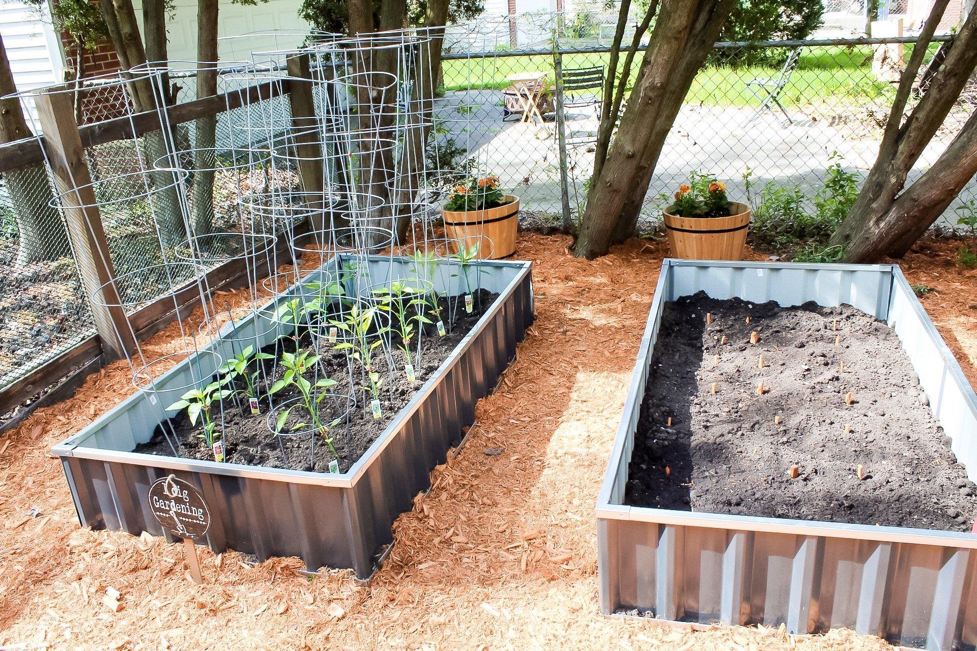 gardening tips - rows