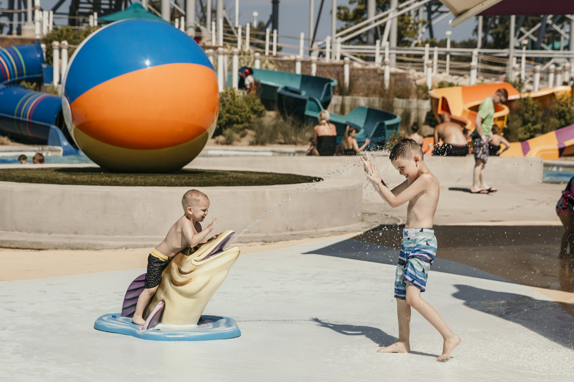 the boys playing in the water together in cedar point shores