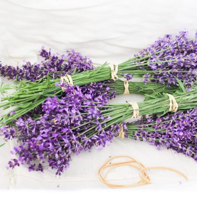 How To Dry Lavender To Preserve Fragrance And Color (3 Easy Steps)