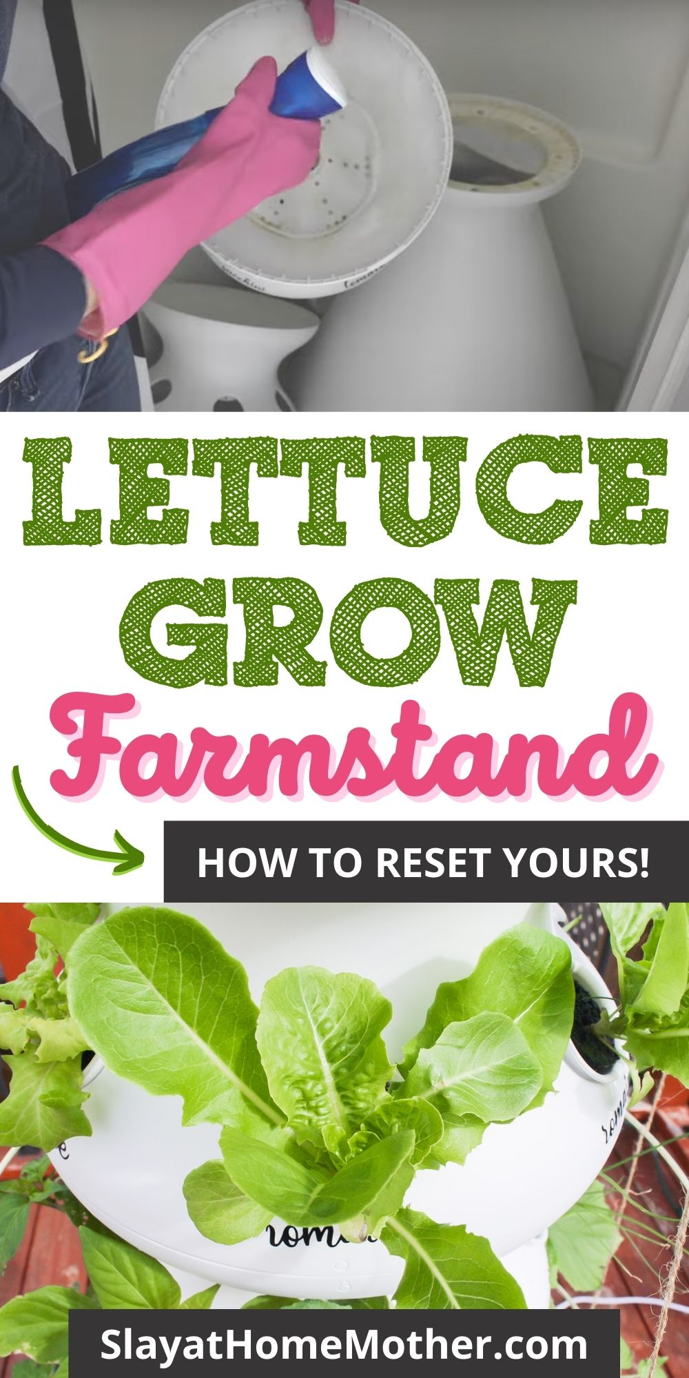 lettuce grow farmstand reset pin